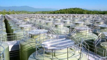 江苏恒顺年产1.5万吨酱油扩建项目环境影响评价公示