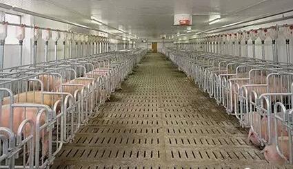 淮安温氏畜牧有限公司严岗猪场改扩建项目环境影响评价第一次公示