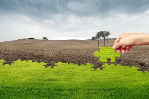 汇总 | 关于土壤方面的问题咨询与回复(一)
