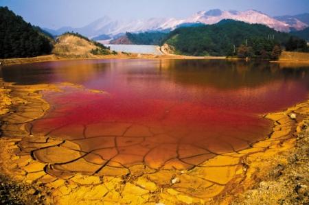 茉湖东路以东、林场路以北地块土壤污染状况调查报告公示