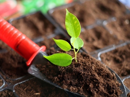 大同海德世地块土壤污染状况调查报告公示